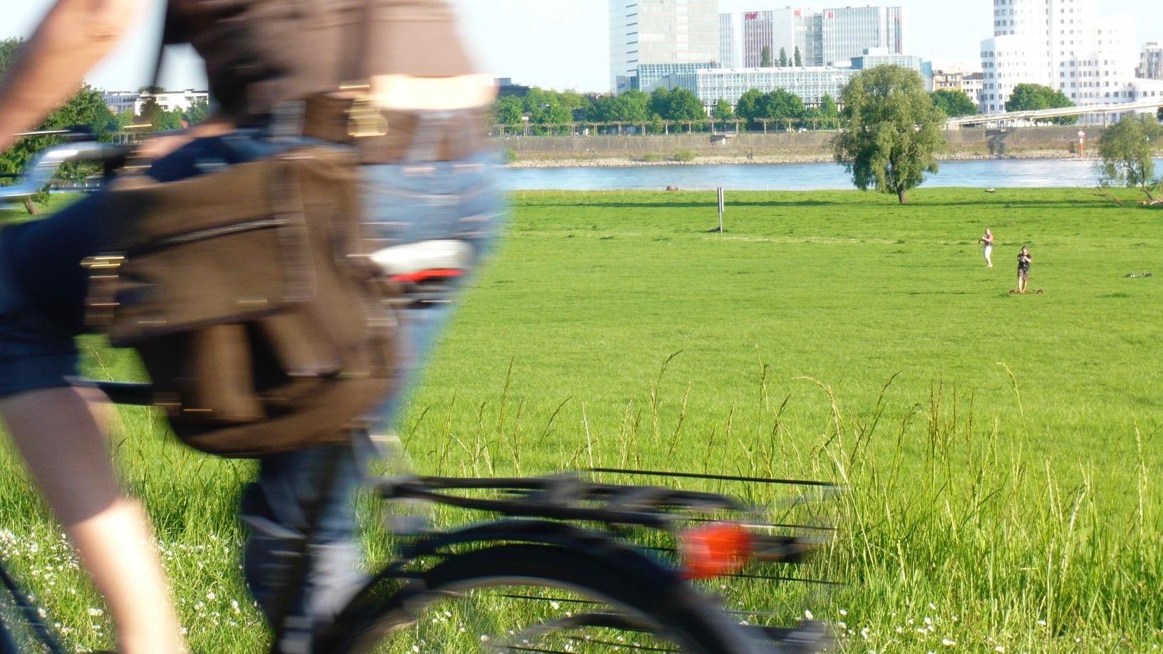 PolitikerINNen auf's Fahrrad